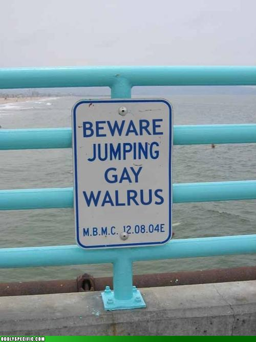 This Sounds Hazardous