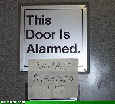 Startled Door