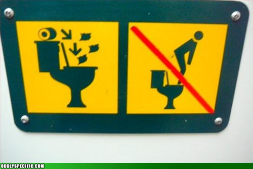 No Pooping All Over Toilet