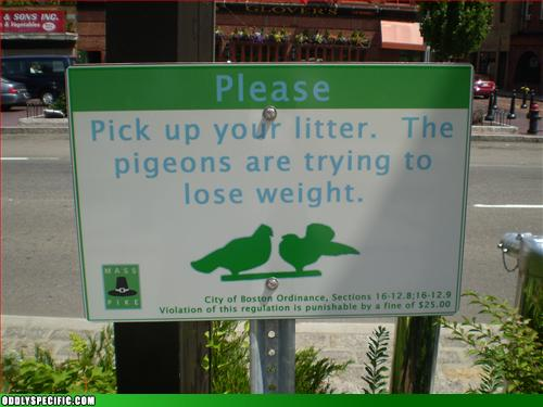 Funny Signs - The Avian Diet