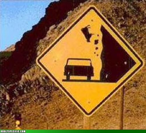 Watch For Falling Cows