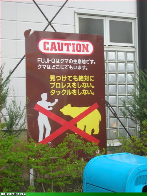 Funny Signs - Absolutely No Pro-Wrestling The Bears.