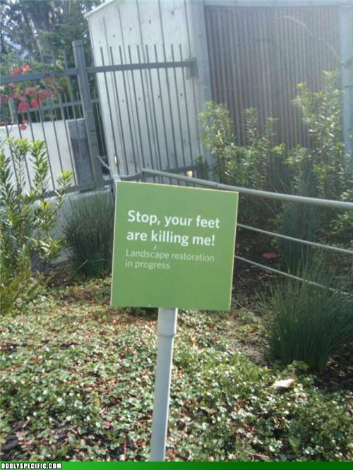 Funny Signs - Well...Your Stamens Are Killing Me