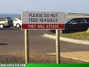 Funny Signs - Mine?