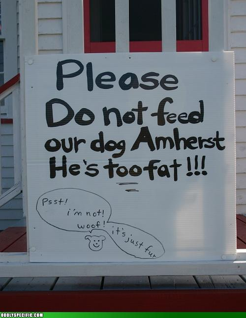 Funny Signs - It's Not Just Fur