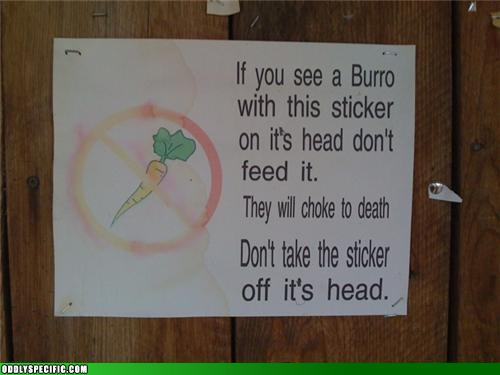 Funny Signs - Burro Sticker